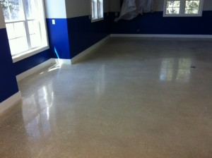 800 Grit Polished Concrete